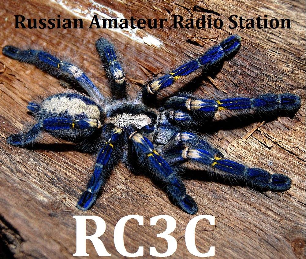 RC3C QSL