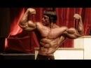 Arnold Schwarzenegger Bodybuilding Training Motivation - The KING 2018