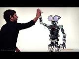 Робот Меканоид G15KS в IqToy.ru
