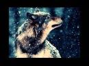 Т Тишинская Волчица