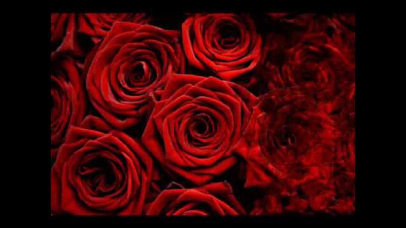 Алла Пугачева - Миллион Алых Роз_ Million of Scarlet Roses