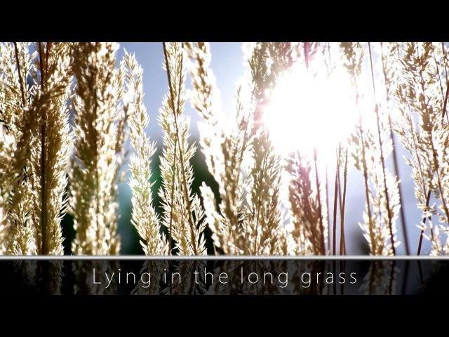 Enya - Flora's Secret [720p HD] [LYRICS]