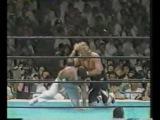 1988-06-24. NJPW. Owen Hart vs. Shiro Koshinaka.