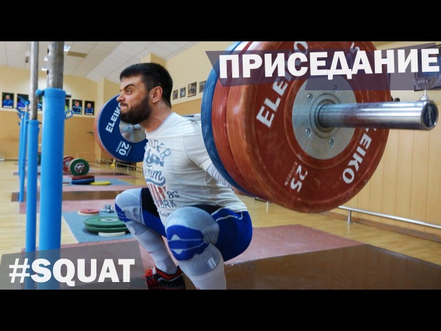 Back SQUAT A.TOROKHTIY (weightlifting crossfit)