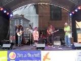 The Wirebirds feat Jenny 'Janita' Haan@ FollyFest 2014