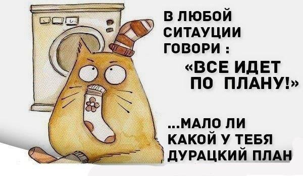 https://pp.vk.me/c623428/v623428388/4ce40/ZSMglx9t1T0.jpg
