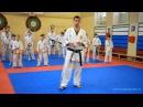 Видеоуроки Косики каратэ (Koshiki karate lessons). СФП. Мартынов Артем. 3дан