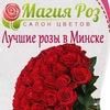 Розы, цветы в Минске. Доставка