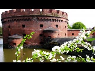 Мой любимый Калининград (под песню Александра Мирского
