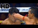 Muay Thai Elbow Knock Out HD Best of AUG 2014