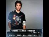 Lee Cabrera, Tommie Sunshine - Shake It (DJ Merry Chap &amp DJ Cristales Mashup)
