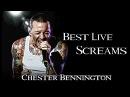 Chester Bennington Best Live Screams!