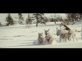 Husse - Sleigh Dogs 30s H264