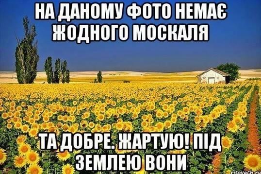 Общественный люстрационный комитет набирает в свой состав всех желающих, - Соболев - Цензор.НЕТ 300