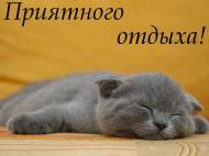Выходные! Приятного отдыха! Спокойной ночи!