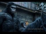 Планета обезьян: Революция - Фильм 2014 Смотреть онлайн