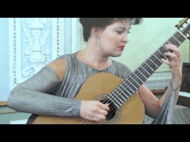 Гитарный дуэт Фиеста - Евгений Штефан Звездный дождь