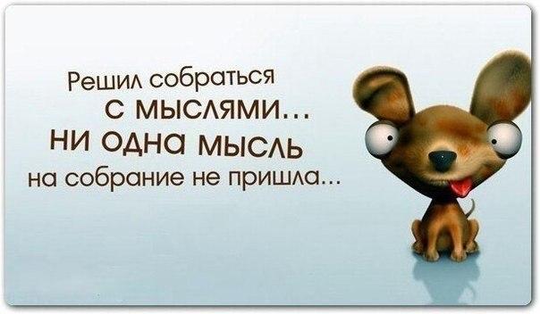 http://cs623616.vk.me/v623616870/1d15/16LgWW_USg0.jpg