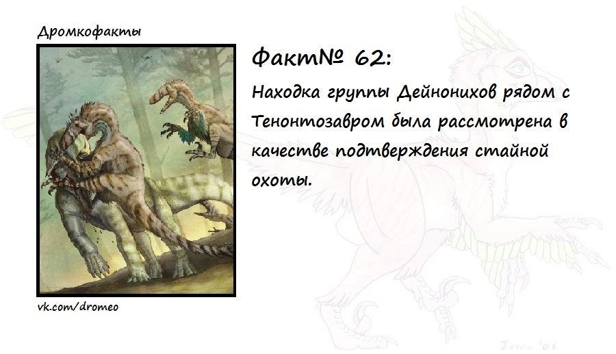 https://pp.vk.me/c623617/v623617874/12f52/PXDaRUuCsPc.jpg