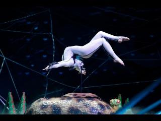 Cirque du Soleil - OVO - Contortion by Aruna