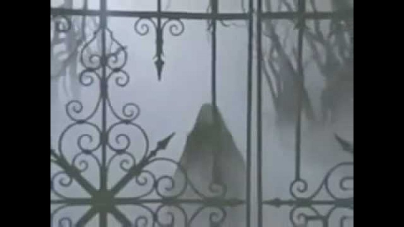 Mazzy Star - Flowers In December (Official video)