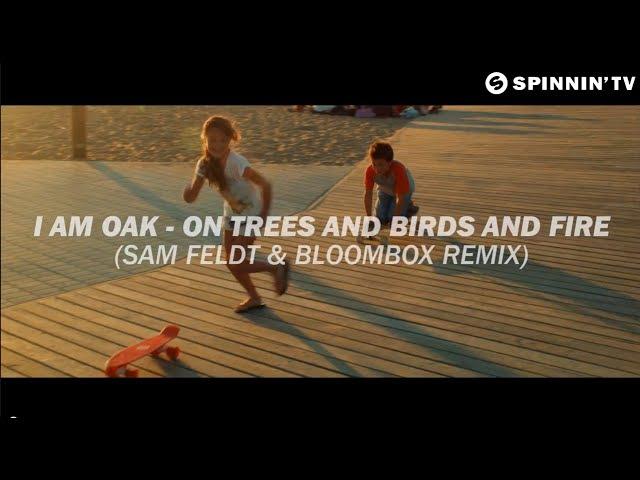 I Am Oak - On Trees and Birds and Fire (Sam Feldt Bloombox Remix) [2010]