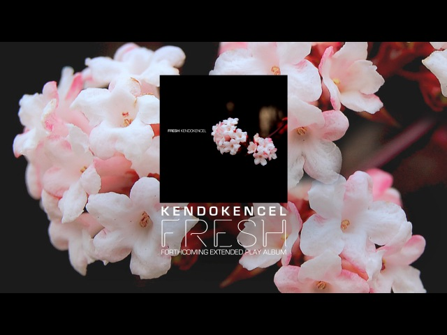KendoKencel - Disco House Live (Ableton Live Akai LPK25 Akai MPD18)