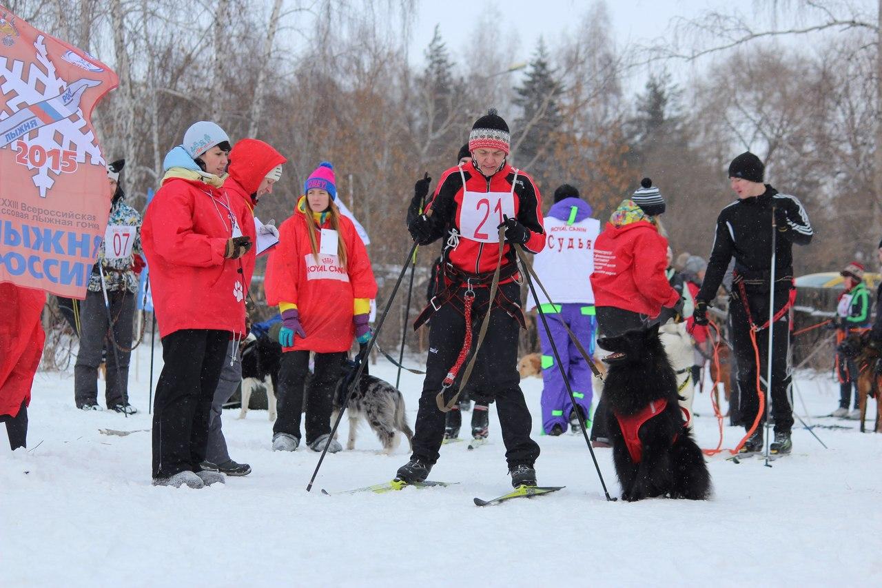 21 февраля 2015 года КУБОК РОССИИ (2 этап) по зимним дисциплинам кинологического спорта. г. Омск RZGq-Jj1Otc