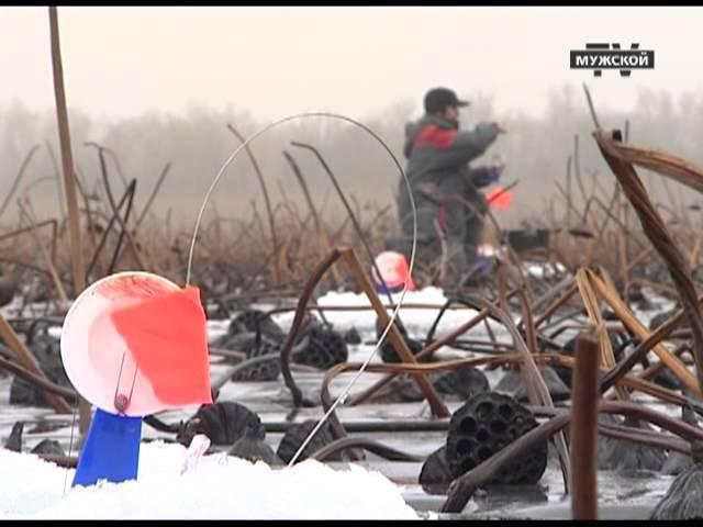 Ловля жерлицы на мелководье. Рыболовная Школа 10