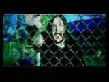 Солнце-Чернозем-Детские шалости (2008)