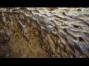 Так выглядят метеориты Богуславка Чебанкол Сеймчан Сихоте Алинский Сыромолотово Мандрабилла