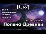 TERA online (RU) - Поляна Древней (новый вкусный соло данж)