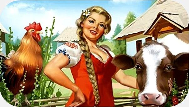 Ферма соседи! S3W2bMbGiWc