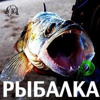 ugra_sport