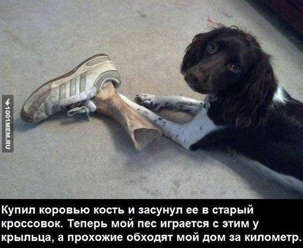 https://pp.vk.me/c623620/v623620857/29588/2HnXb7nakM8.jpg