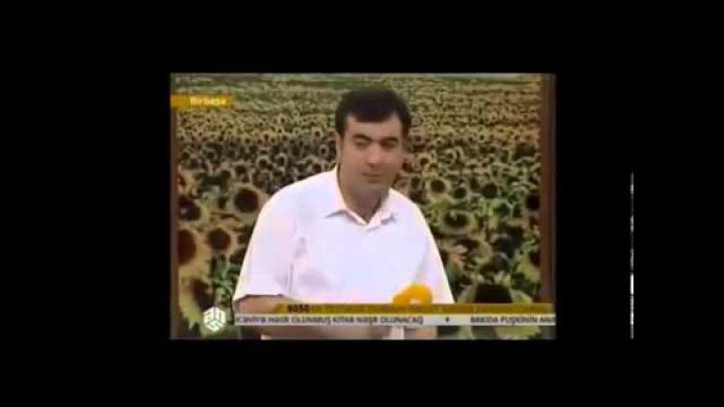 Gune baxan - Reshad Dagli