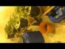 Как выращивать коноплю в домашних условиях, гидропоника