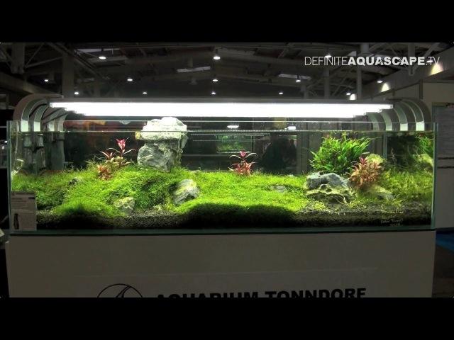 Aquarium Ideas - planted aquariums of Heimtiermesse 2014, Hannover, pt. 1
