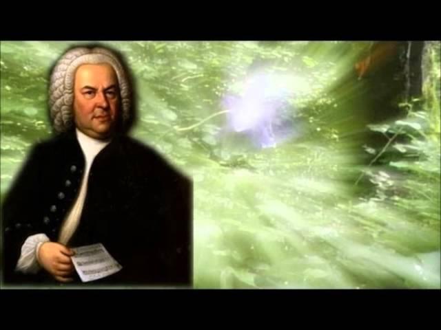 J. S Bach Befiehl du deine Wege Matthäus-Passion