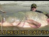 В Италии поймали гигантского сома весом 127 кг