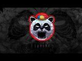 DJ Gameplay - Young Birds (Bushes &amp Briars)