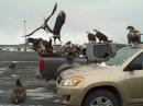 Гульки на Аляске или никогда не оставляйте рыбу в машине