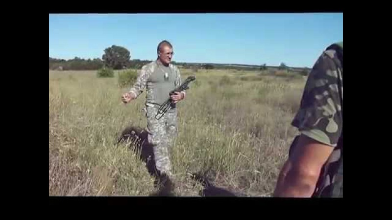 Вводный курс стрелковой подготовки (штурмовой взвод) - 1