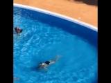 Санька плавает под водой