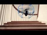 AirHogs RollerCopter 44501 Вертолет эйрхокс в клетке