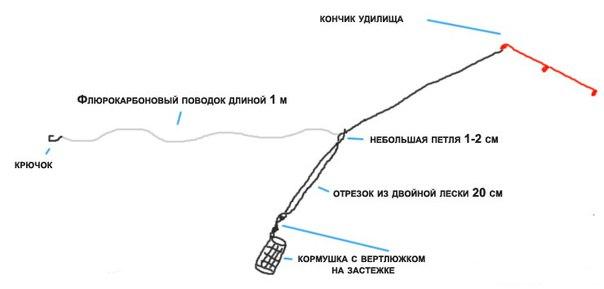 ๖ۣۜРЫБАК Курской области