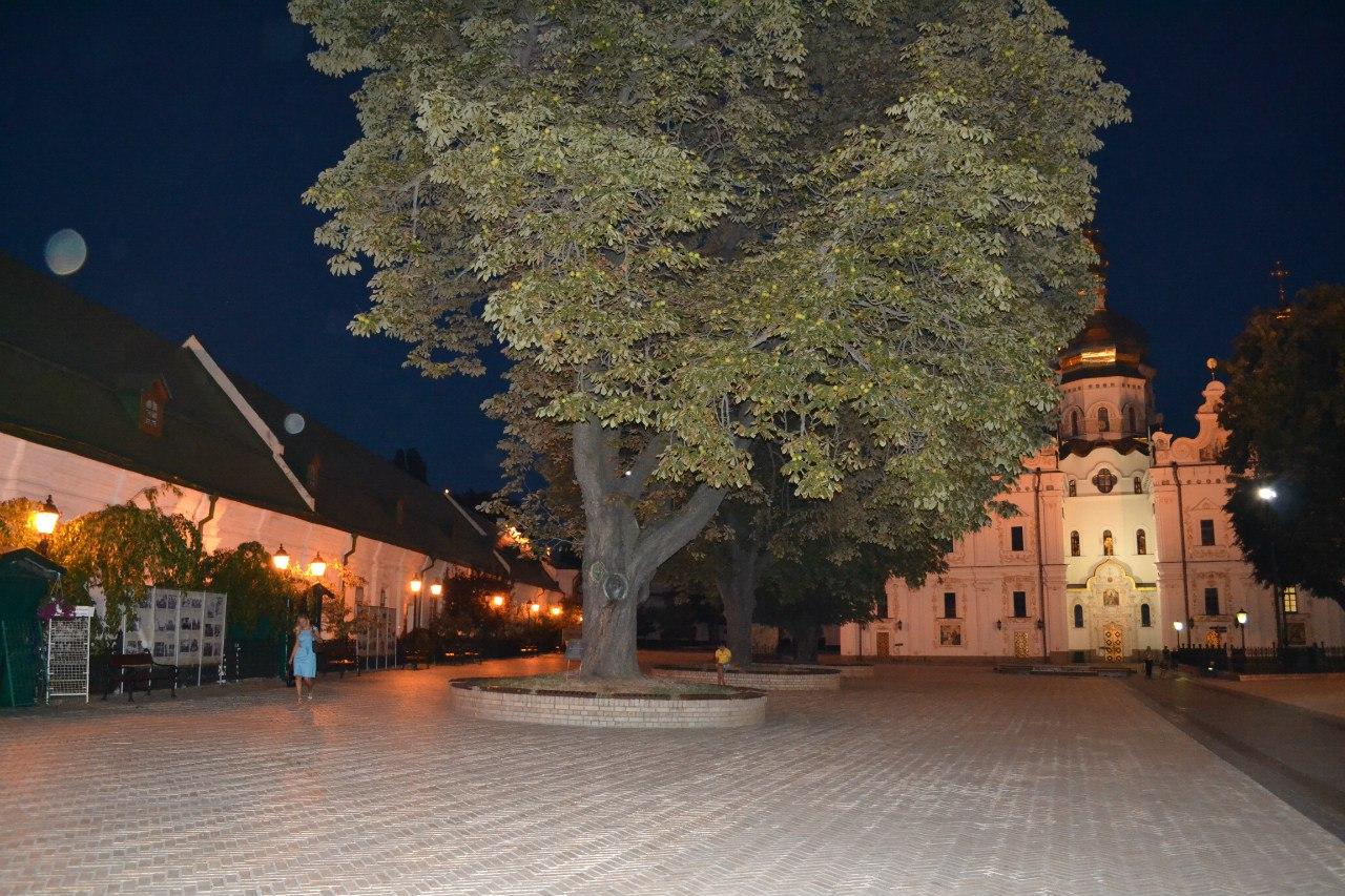 Киев. Печерск. 25.08.15 г. Елена Руденко (130 фото) _ab1TZvQRzw
