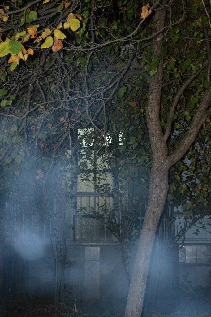 """Киев. Парк """"Дача Хрущева"""" 2.09.15 г. Елена Руденко. (126 фото) TB40cNrN8C4"""