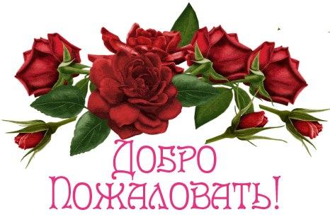 http://cs623624.vk.me/v623624949/2ec9f/vmDZ1omfxlc.jpg