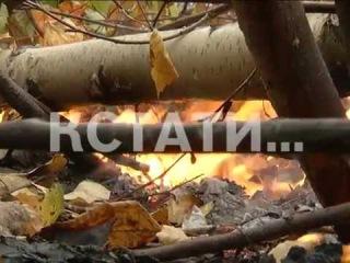 Смотрите в 19.00:огненный сентябрь-теплая осень привела к резкому увеличению числа лесных пожаров.